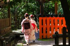 Maiko girls in Japanese garden, Kyoto Japan. A couple of Maiko girls in elegant kimono dress at old garden of Japanese shrine, Kyoto Japan Stock Photo