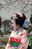 Maiko Stock Image