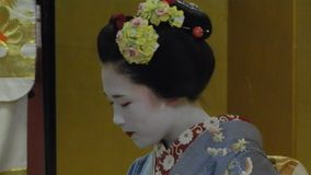 Maiko, Kyoto, Japan stock video