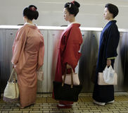 Maiko in line Stock Photography