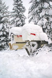 Mail Box Covered in Snow. Two mailboxes on wooden post capped with mound of snow. Post is nearly buried in snow. Three tall pines stand in background Royalty Free Stock Photo