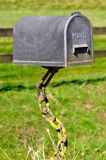 Mail Box supported by chains in the nature Stock Images