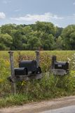 Mail boxes on a swamp. USA royalty free stock photography
