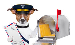 Mail dog. Postman mail dog with a air mail letter and mail box Stock Photo