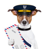 Mail dog. Postman mail dog with a air mail letter Stock Photo