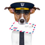 Mail dog. Postman mail dog with a air mail letter Stock Image