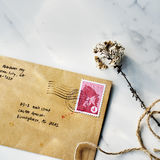 Mail Letter Correspondence Flower Communication Concept Stock Image