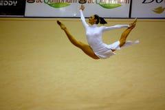 Mailand gymnastisches großartiges Prix 2008 Lizenzfreie Stockbilder