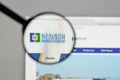 Mailand, Italien - 10. August 2017: Hengli Group-Logo auf der Website Lizenzfreie Stockbilder