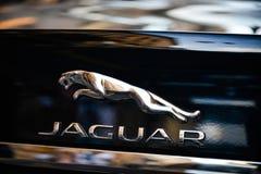 Mailand, Italien - 24. September 2017: Jaguar-Logo auf einem schwarzen Sport Lizenzfreie Stockfotos