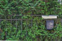 Mailbox auf natürlichem grünem Hintergrund Lizenzfreie Stockfotografie