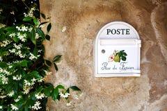 Mailbox with fig and jasmine bush Royalty Free Stock Photo