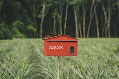 Mailbox in the forest. royalty free stock photos