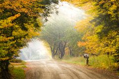 Mailbox on a pole on the side of a dirt road during fall foliage Stock Photo