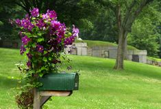 Mailbox with Purple Flowers. A country mailbox is overgrown with purple flowers. In the background is the town cemetary with old tombs set into the hillside stock images
