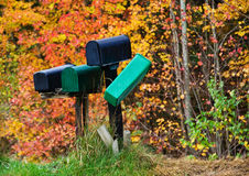 Juxtaposed mailboxes. Mailboxes against autumn foliage trees Royalty Free Stock Image