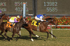 The Mailet Wins The Miesque Stakes Stock Photo