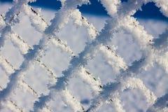 Maille en métal dans la gelée Photos stock