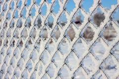 Maille en métal dans la gelée Photographie stock libre de droits