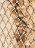 Maille en métal sur le fond en bois Images stock