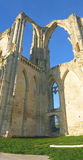 Maillezais french abbey. Vertical panoramique of the Maillezais french abbey - France - Vertical Panorama Royalty Free Stock Images