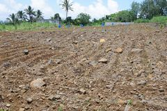 Stony field plowed under sugar cane sowing on the island of Mauritius. The main agricultural crop on the island of Mauritius is sugar cane stock photos