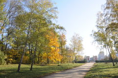 The main alley of the ParkAlexandria Stock Photography