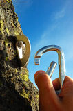 Main attachant le carabiner Image stock