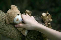 Main atteignant pour un ours de nounours Photographie stock libre de droits