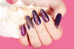 Main avec de longs ongles manucurés et coquillage artificiels Photographie stock libre de droits