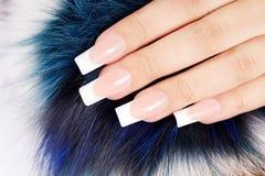 Main avec de longs ongles manucurés français artificiels sur le fond de fourrure Photographie stock libre de droits