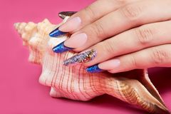 Main avec de longs ongles manucurés français bleus artificiels et un coquillage image stock