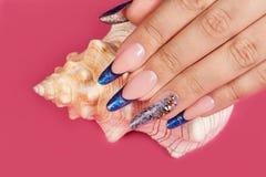 Main avec de longs ongles manucurés français bleus artificiels et un coquillage photographie stock libre de droits