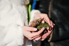 Main avec des anneaux des couples de mariage Photo stock