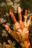 Main avec des fleurs Images libres de droits
