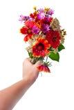 Main avec des fleurs au-dessus de blanc Photographie stock libre de droits
