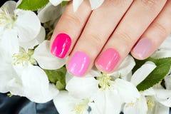Main avec des ongles manucurés sur le fond de fleurs Photographie stock libre de droits