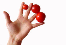 Main avec des tomates Image stock