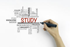 Main avec l'écriture de marqueur - ÉTUDIEZ le nuage de mot, concept d'éducation Image libre de droits