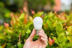 Main avec l'ampoule image libre de droits