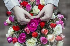Main avec la fleur photographie stock libre de droits