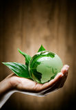 Main avec le globe d'eco Photo stock