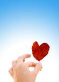 Main avec un coeur image libre de droits