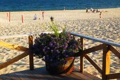 Main Beach, East Hampton. A flower pot sits at the corner of the Main Beach Pavilion in East Hampton, Long Island Stock Images