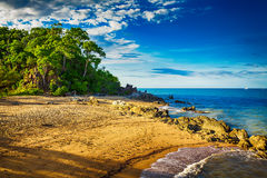 Main beach in Palm cove with rocks and trees during sunset Royalty Free Stock Photo