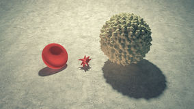 Main blood cells in scale Royalty Free Stock Photos