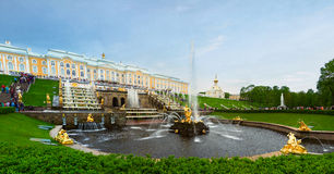 The main cascade of fountains of Peterhof. Golden statue of Samson in the park of Peterhof, Russia Royalty Free Stock Photo