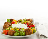 Main course Stock Photography