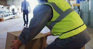 Main-d'œuvre féminine souffrant des douleurs de dos tout en tenant la boîte lourde 4k clips vidéos
