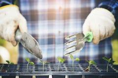Main d'agriculteur tenant l'outil de jardin images libres de droits